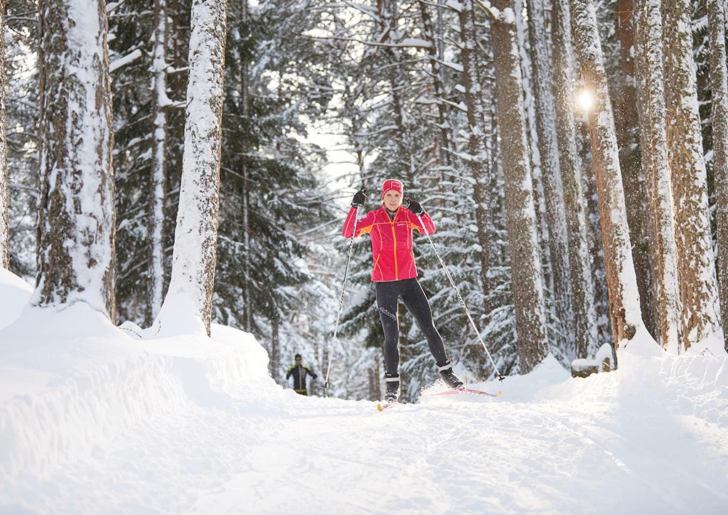 Sonnenplateau Camping Gerhardhof GmbH - Sport und Freizeit - Winteraktivitäten - Langlaufen - Startbild