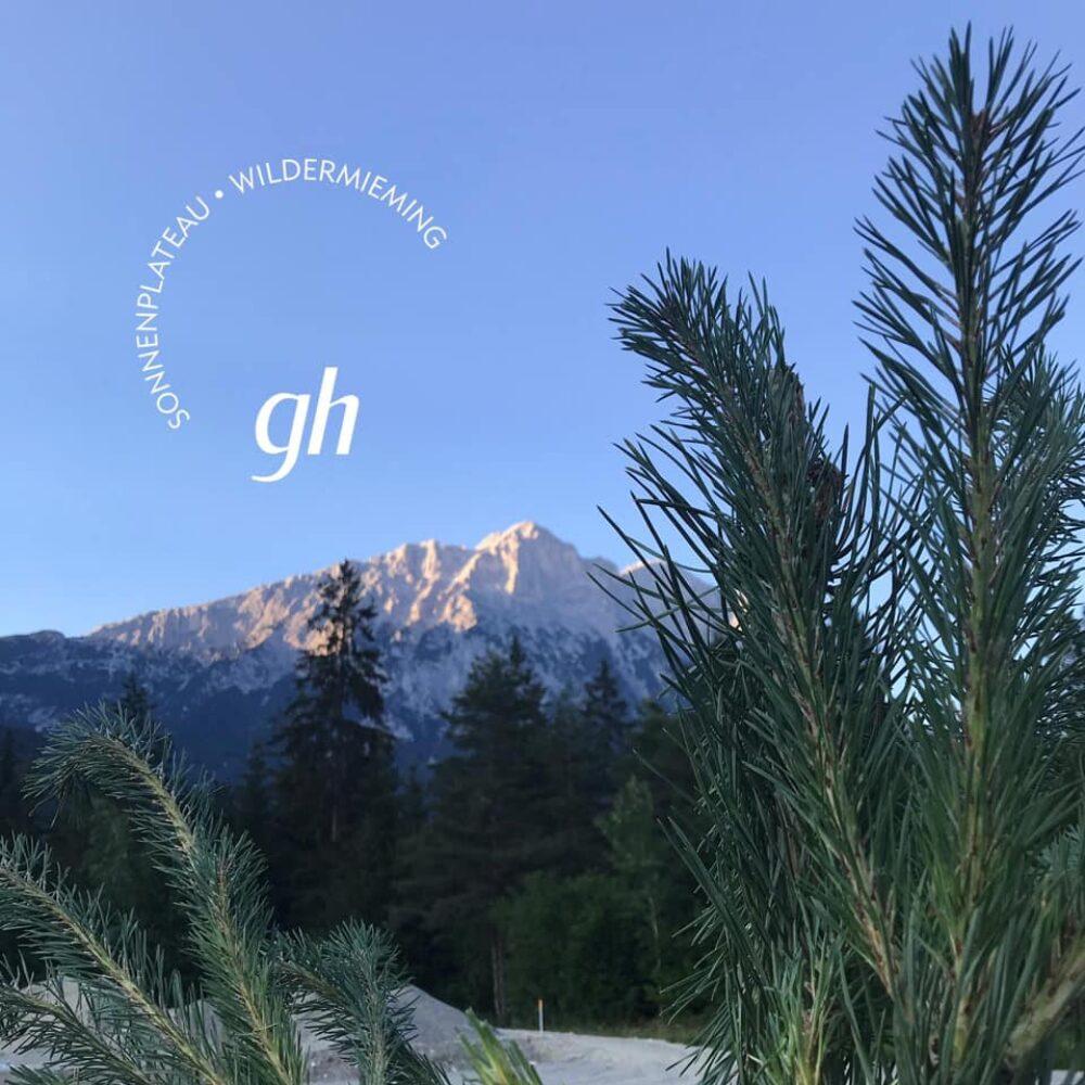 gerhardhof-baeume-pflanzen-1