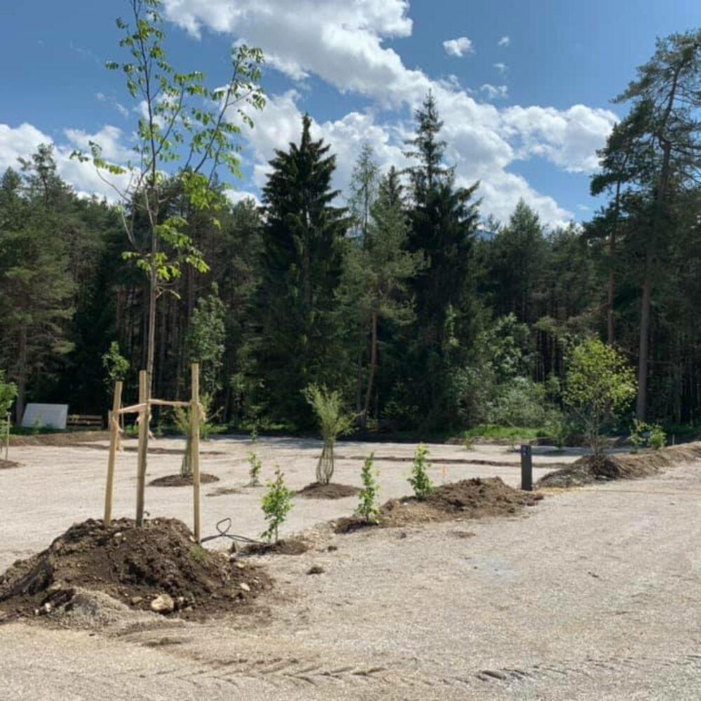 gerhardhof-baeume-pflanzen-5